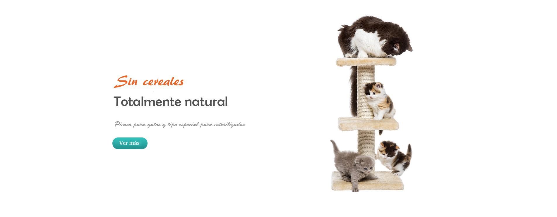 Pienso para especial gatos esterilizados